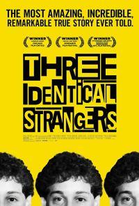 Three Identical Strangers Poster